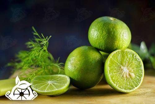 خرید رب میوه لیمو سبز