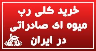 خرید کلی رب میوه ای صادراتی در ایران 1